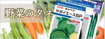 野菜のタネ