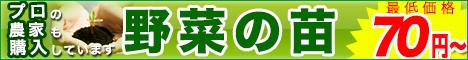 野菜の苗の購入はグリーン・レバレッジ オンラインショップ